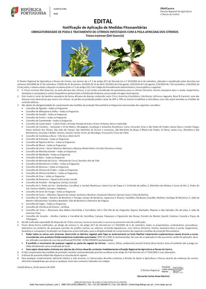 NOVO EDITAL - Notificação de Aplicação de Medidas Fitossanitárias - Psila Africana dos Citrinos (Trioza erytreae)