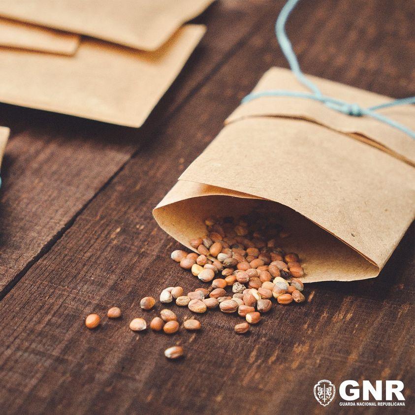 GNR - Alerta Guarda Nacional Republicana -   Entrega de sementes não solicitadas pelo correio