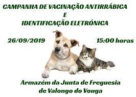 campanha_de_vacinacao_antirrabica_e_identificacao_eletronica